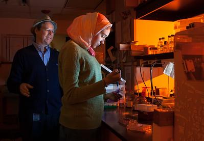 High School student Leila Abdelrahman and Dr. Richard Myers in a University of Miami Biochemistry & Molecular Biology lab on Friday, January 9, 2015.  Photo by Gregg Pachkowski - Biomedical Communications.