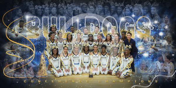 If you would like to purchase this poster follow the link!http://sandydavisphotography.com/#/gallery/hylton-cheer-competition/cheer-blue-sdp/
