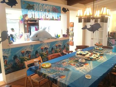 2015-09-12 Allie's Birthday Party