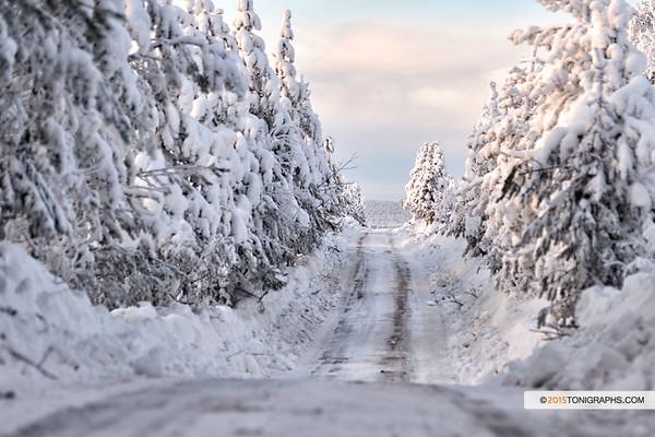 arctic15__0002