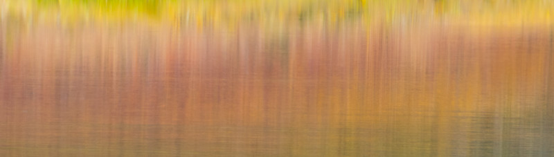 Fall colors reflected in a pond.  It was really a picture of a loon, but it didn't cooperate.