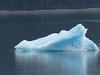 282-Tracy Arm iceberg