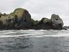212-island near Sitka