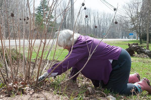JOED VIERA/STAFF PHOTOGRAPHER-Newfane, NY- Karen Zapp tends to her garden.