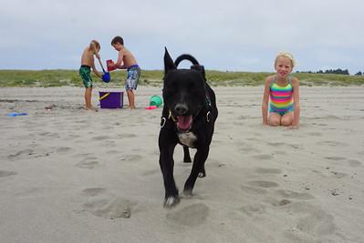 Beach House with Elmendorfs - July