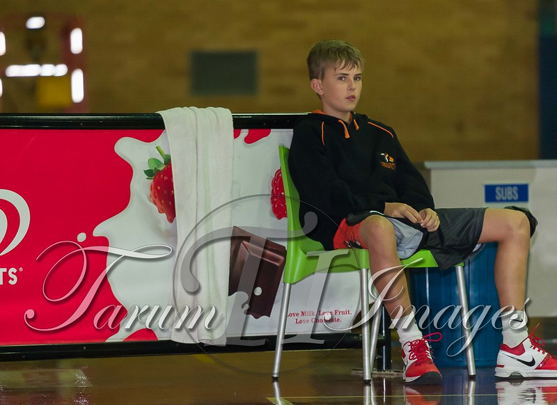 © Braves (70) v Tamworth Thunderbolts (75) 4 July 2015-7635