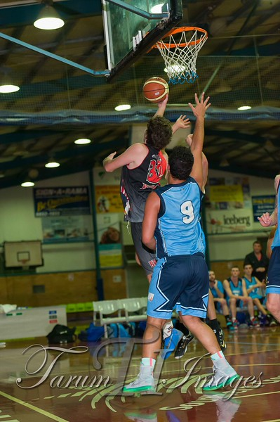 © Braves (70) v Tamworth Thunderbolts (75) 4 July 2015-7596