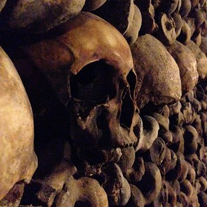One Skull Stands Out in a Line of Bones