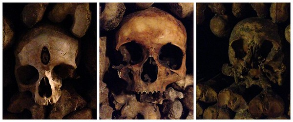 Three Especially Interesting Looking Skulls at the Catacombs of Paris