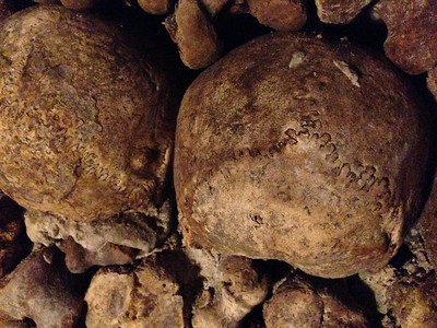 Skulls in the Catacombs of Paris Bear These Odd Marks