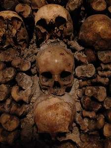 Three Stacked Skulls in the Catacombs of Paris, France