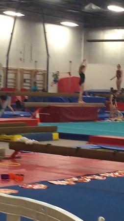Brady Gymnastics