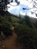 012 Black Butte Trail