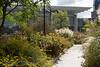 Millenium Park, Lurie Garden