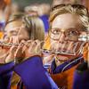 clemson-tiger-band-louisville-2015-20