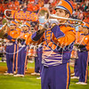 clemson-tiger-band-fsu-2015-873