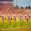 clemson-tiger-band-fsu-2015-859