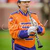clemson-tiger-band-fsu-2015-727