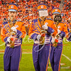 clemson-tiger-band-fsu-2015-853