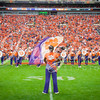 clemson-tiger-band-fsu-2015-681