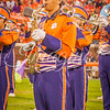 clemson-tiger-band-fsu-2015-868