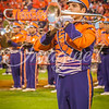 clemson-tiger-band-fsu-2015-874