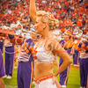 clemson-tiger-band-fsu-2015-861