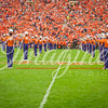 clemson-tiger-band-fsu-2015-676