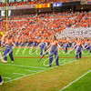 clemson-tiger-band-fsu-2015-668