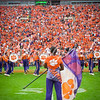 clemson-tiger-band-fsu-2015-680