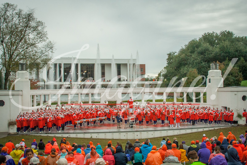 clemson-tiger-band-fsu-2015-398