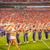 clemson-tiger-band-fsu-2015-852