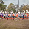 clemson-tiger-band-fsu-2015-204