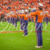 clemson-tiger-band-fsu-2015-677