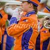 clemson-tiger-band-fsu-2015-761