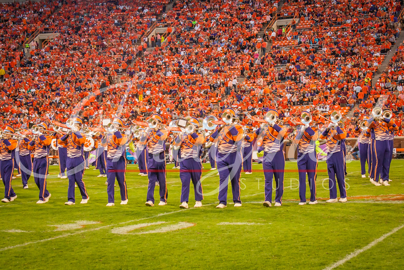 clemson-tiger-band-fsu-2015-856