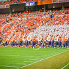 clemson-tiger-band-fsu-2015-653