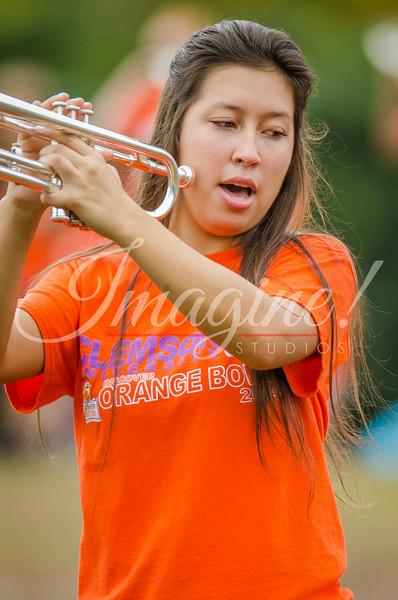 clemson-tiger-band-fsu-2015-228
