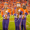 clemson-tiger-band-fsu-2015-854