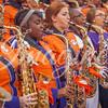 clemson-tiger-band-wf-2015-1128