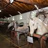 The scene inside the horse shoeing & jobbing barn as seen during Fiesta Latina held at Museum Village in Monroe, NY on Saturday, September 12, 2015. Hudson Press/CHUCK STEWART, JR.