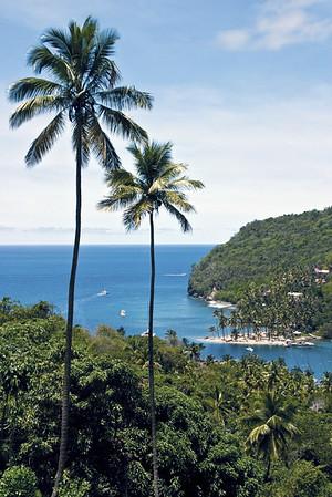 Cruise the Caribbean Sea - 2015