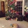 063 Jack and the Christmas Tree