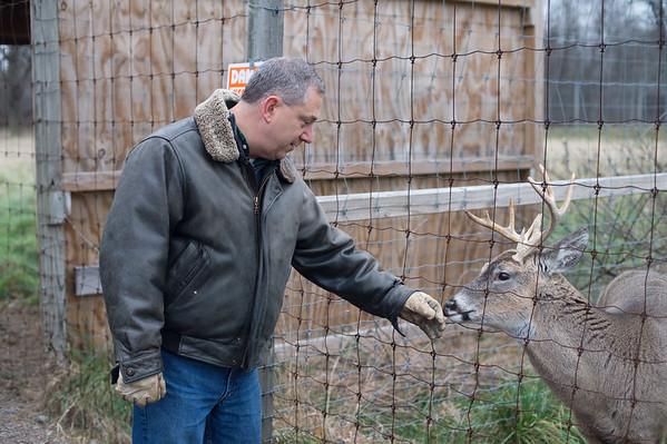JOED VIERA/STAFF PHOTOGRAPHER Wilson, NY-Dan Tronolone pets a deer at Erways Christmas tree Adventure.