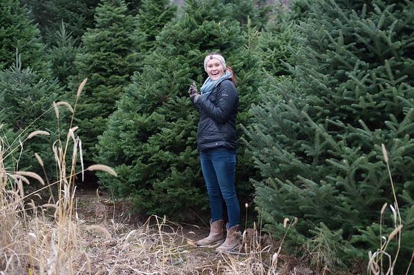 JOED VIERA/STAFF PHOTOGRAPHER Wilson, NY-Rachel Fuerschbach picks out the US&J's Christmas tree at Erways Christmas Tree Adventure.