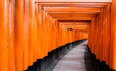 Torii Gates • Kyoto