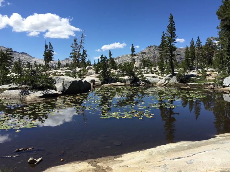 405 Lilly pond near camp