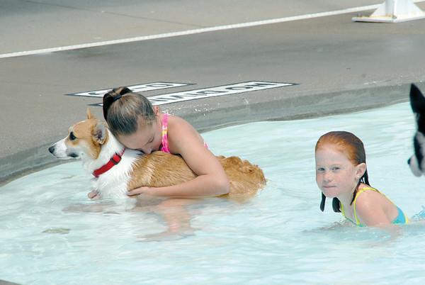 Doggie Dip at Vinton Municiapl Swimming Pool