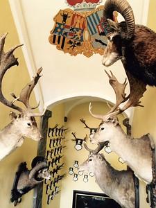 Trophy Hall, Lobkowicz Castle, CZ - Rand Mirante '70