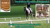 091 Olivia Shore on Hunterbrook Riverdance at 2015 Prestige Loans Wooroloo 3DE Saddles Plus CCN EvA 105 J 15W3DE 15W3DE091